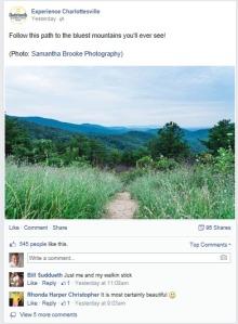 Charlottesville Picture Post